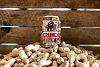 Click image for larger version.  Name:CRUNCH-CRATE-1MB-450x300.png Views:21 Size:238.9 KB ID:2562
